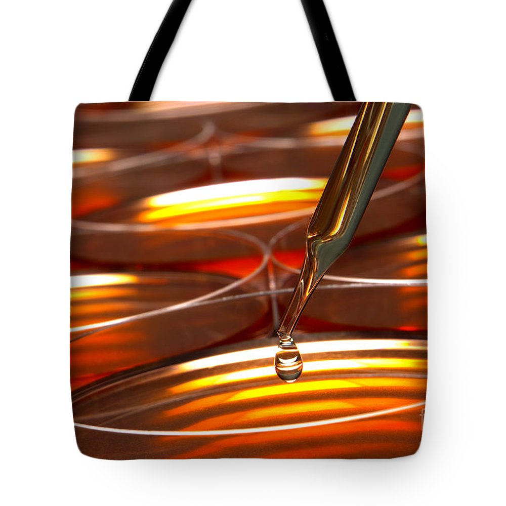 Amber Tote Bag featuring the photograph Laboratory Petri Dishes In Science Research Lab by Olivier Le Queinec