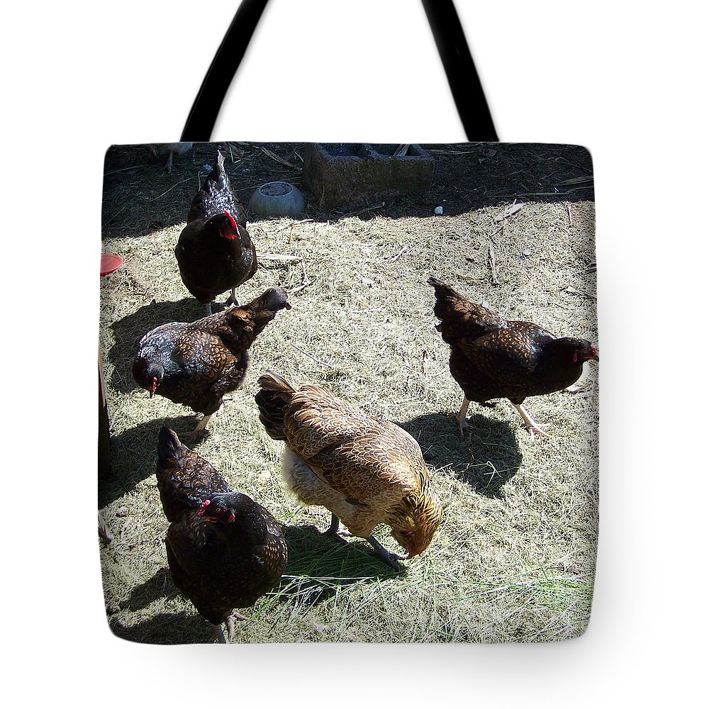 Hens Tote Bag featuring the photograph Ladies Of The Pen by Laurie Kidd