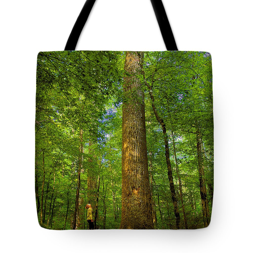 Forest Tote Bag featuring the painting Lady And The Tree by David Lee Thompson