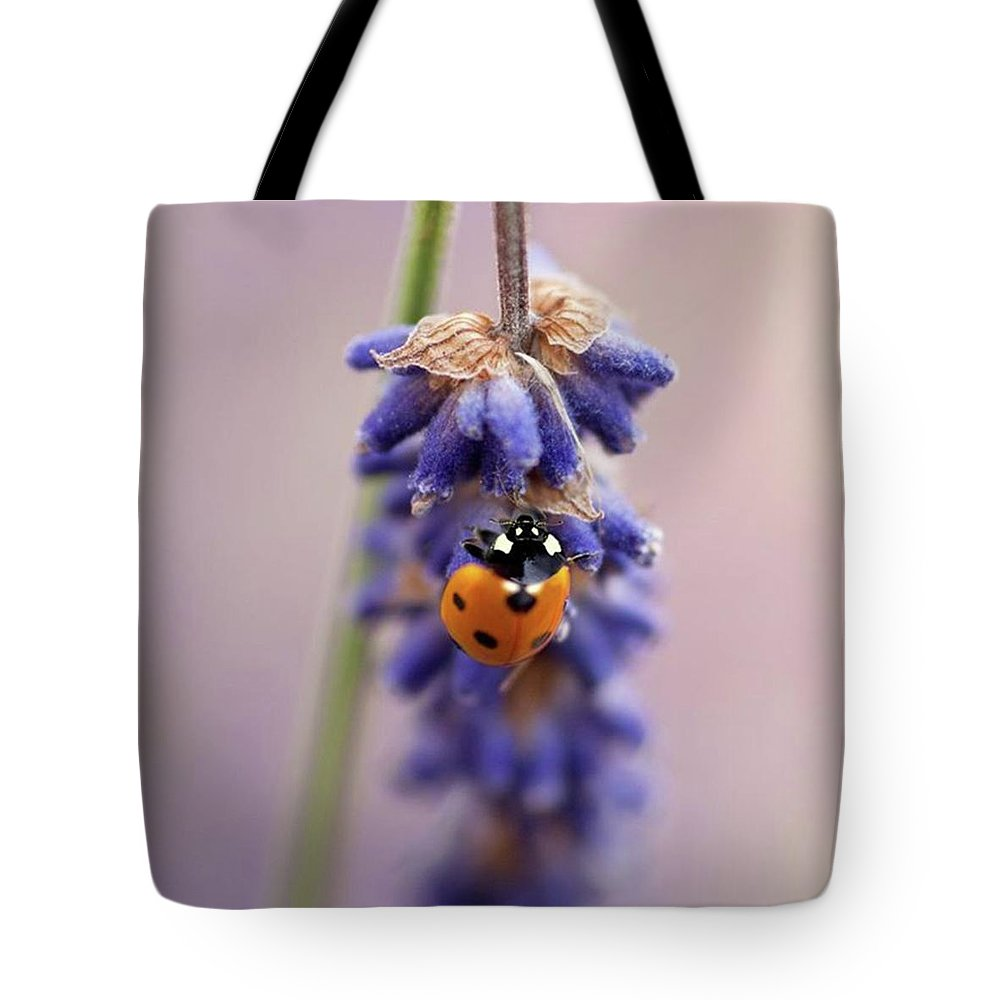 Ladybug Tote Bag featuring the photograph Ladybird On Norfolk Lavender  #norfolk by John Edwards