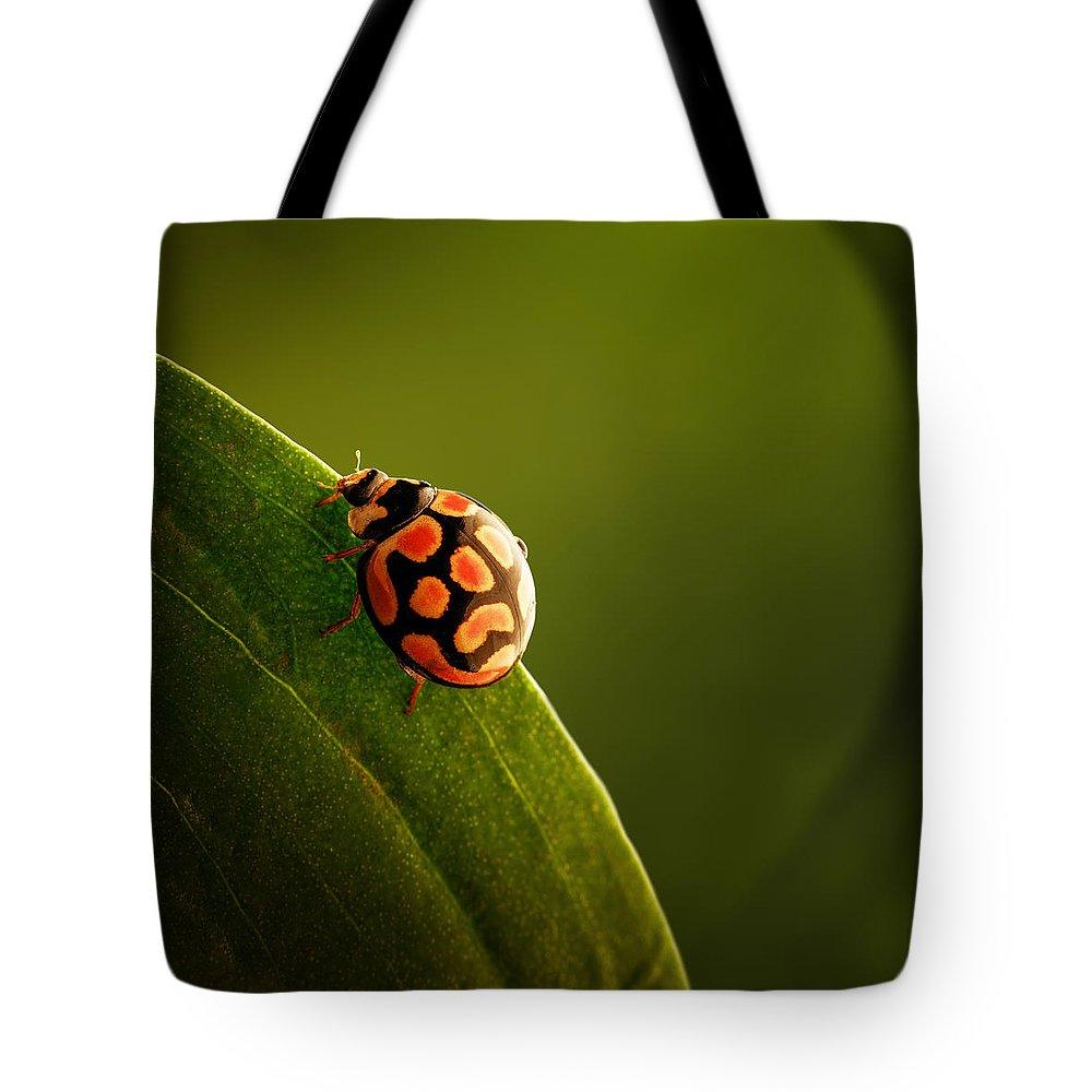 Ladybird Tote Bags