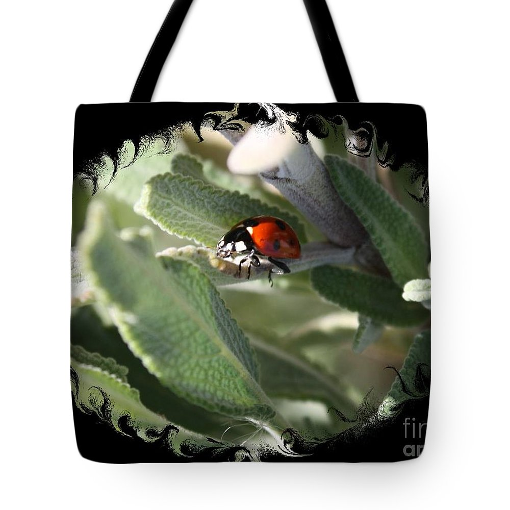 Ladybug On Sage Tote Bag featuring the photograph Ladybug On Sage With Swirly Framing by Carol Groenen
