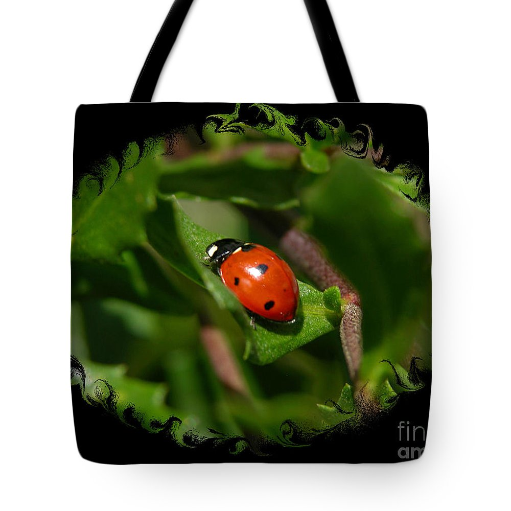 Ladybug Tote Bag featuring the photograph Ladybug With Swirly Framing by Carol Groenen