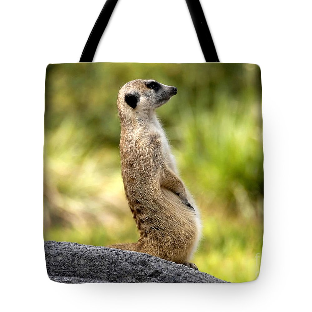 Laid Back Tote Bag featuring the photograph Laid Back by David Lee Thompson