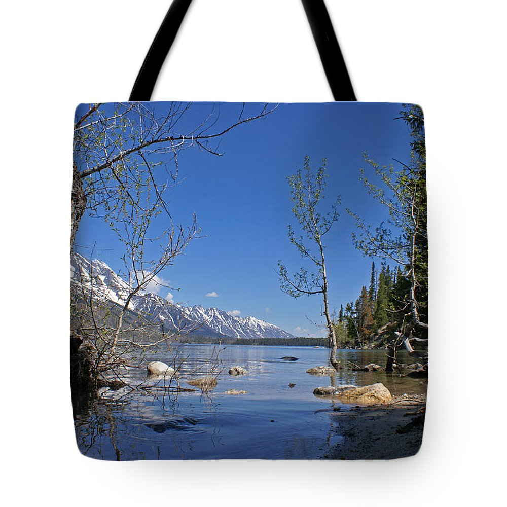 Lake Jenny Tote Bag featuring the photograph Lake Jenny by Heather Coen