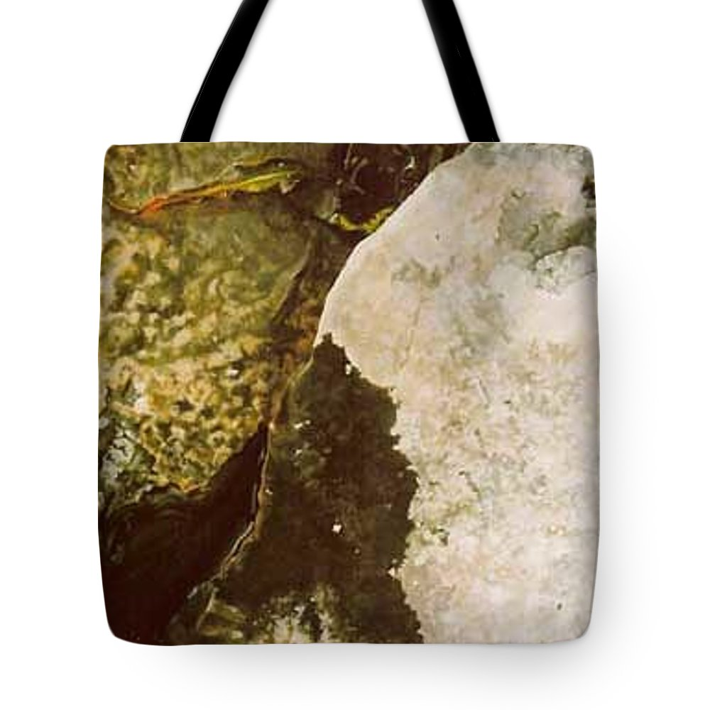 Hyperrealism Tote Bag featuring the painting Lake Level Dropping by Michael Earney