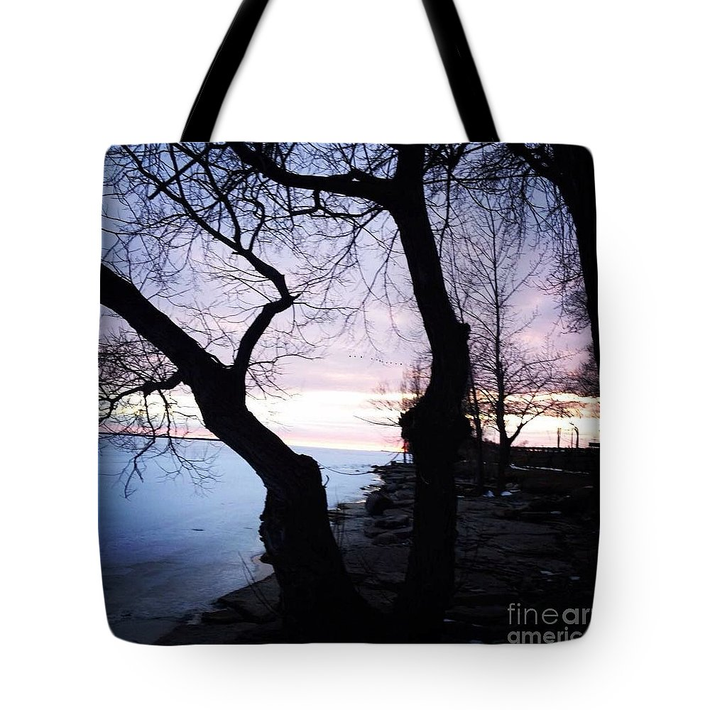 Lake Ontario Tote Bag featuring the photograph Lake Ontario In March by Chris Dippel