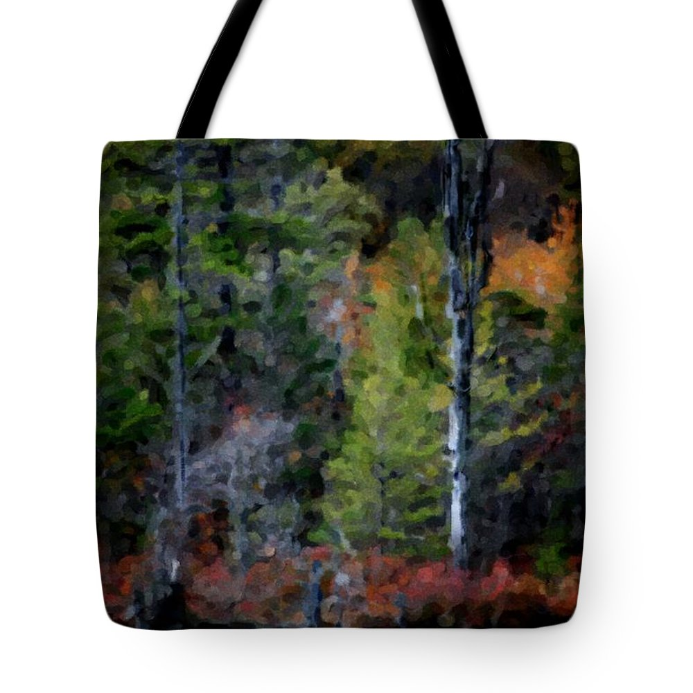Digital Photograph Tote Bag featuring the photograph Lakeside In The Autumn by David Lane