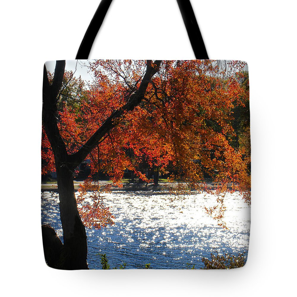 Landscape Tote Bag featuring the photograph Lakewood by Steve Karol
