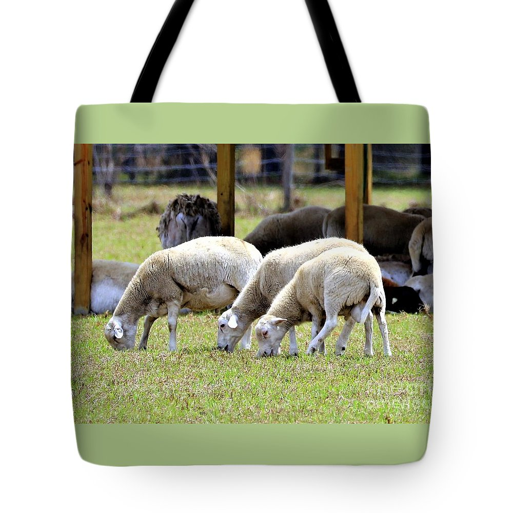 Nature Tote Bag featuring the photograph Lambswool by Diann Fisher
