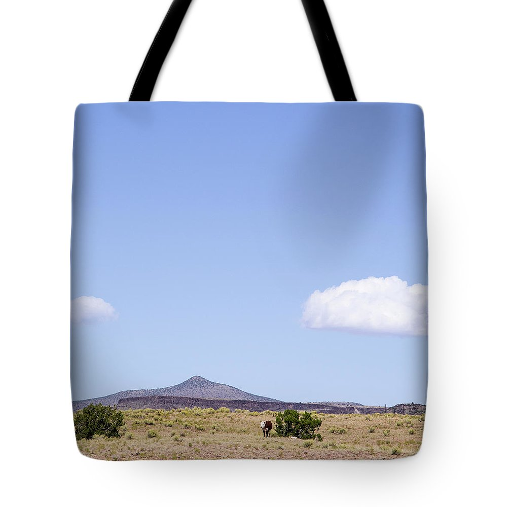 Calisteo Tote Bag featuring the photograph Landscape Galisteo Nm K10d by Otri Park