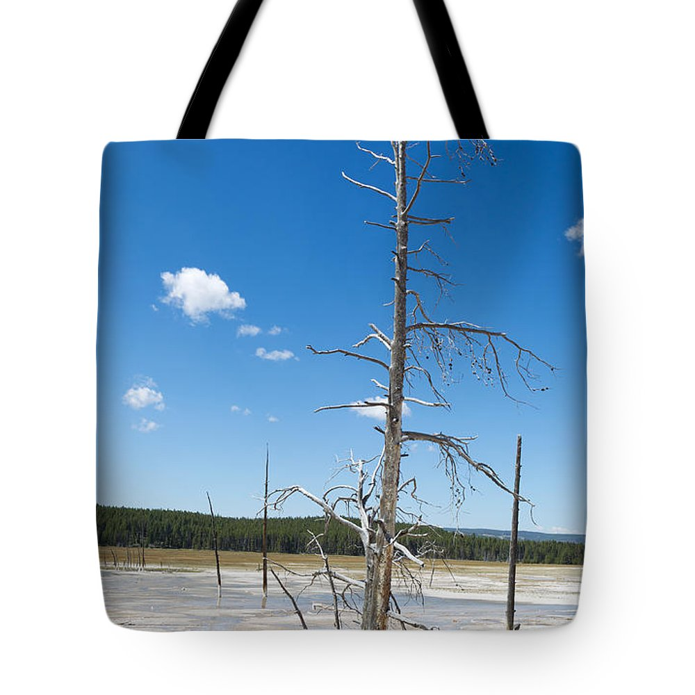 Tree Tote Bag featuring the photograph Large Dead Standing Tree In Hot Springs by Thomas Baker