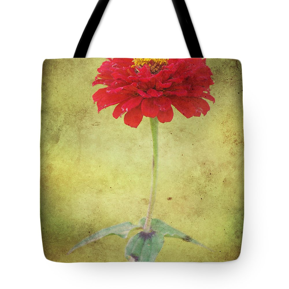 Autumn Tote Bag featuring the photograph Last Days Of Summer by Angela Doelling AD DESIGN Photo and PhotoArt