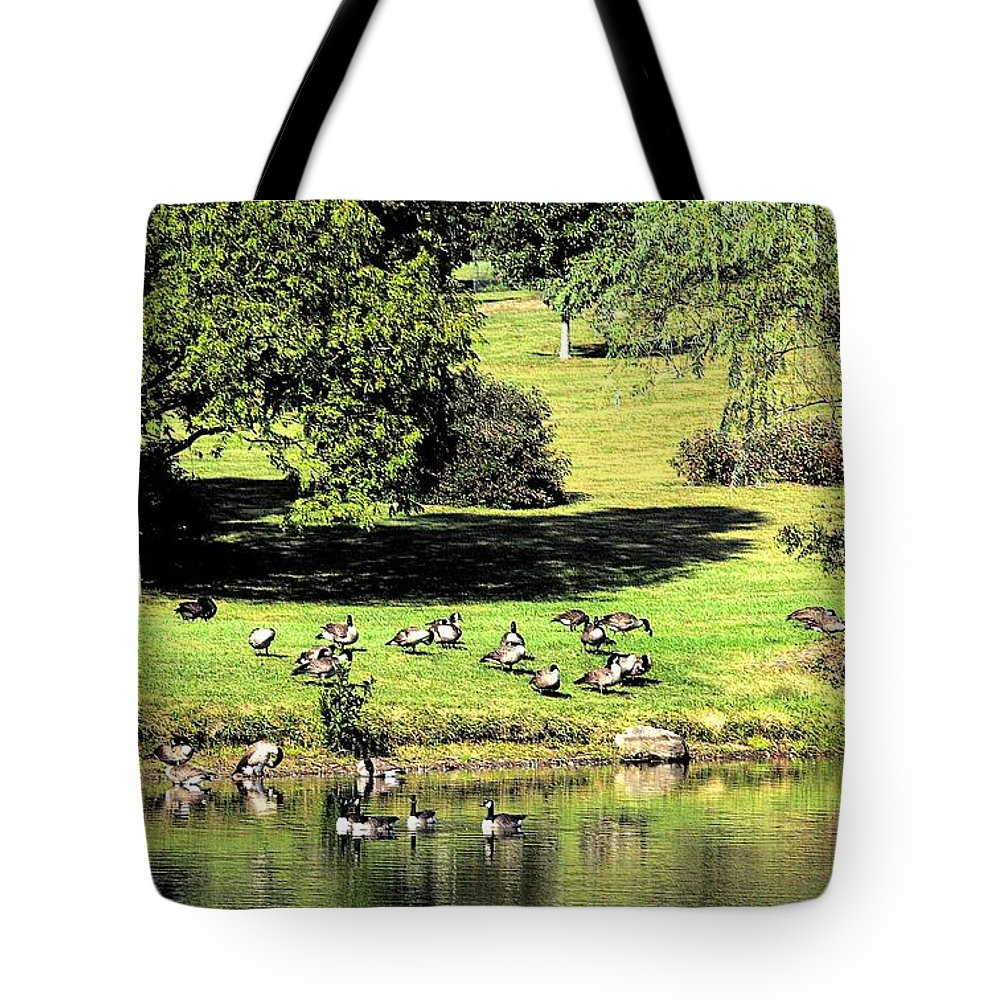 Bird Tote Bag featuring the photograph Last Days Of Summer by Gaby Swanson