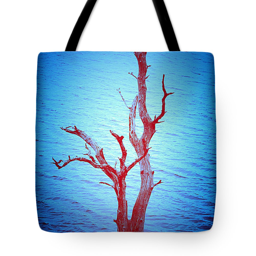 Tree Tote Bag featuring the photograph Last One Standing by Kori Creswell