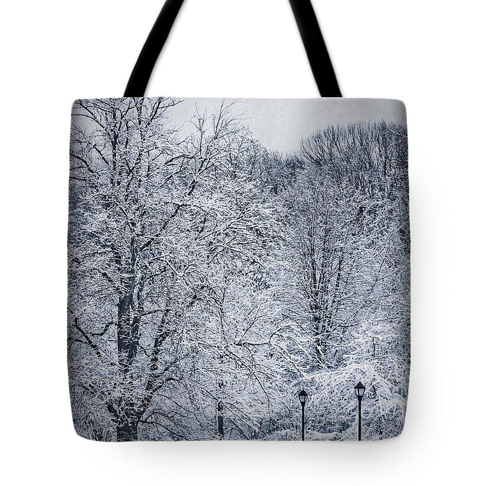 Kremsdorf Tote Bag featuring the photograph Last Winter's Dream by Evelina Kremsdorf