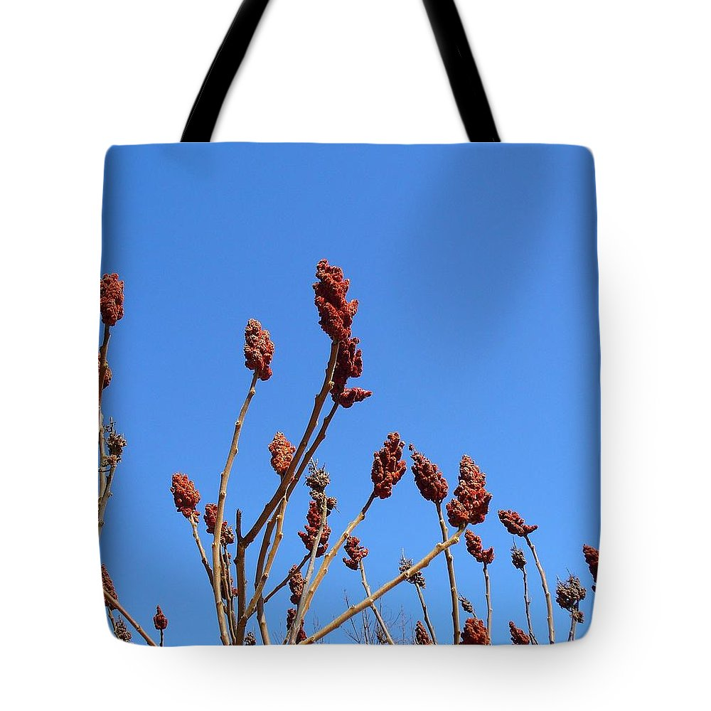 Sky Tote Bag featuring the photograph Last Year's Sumac by Peggy King