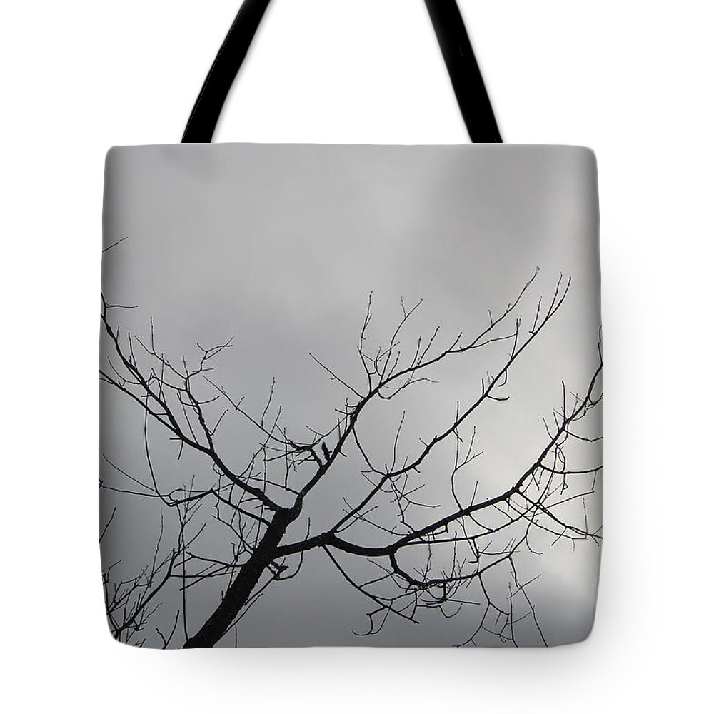 Tote Bag featuring the photograph Late Winter Clouds by Barbara Milhender