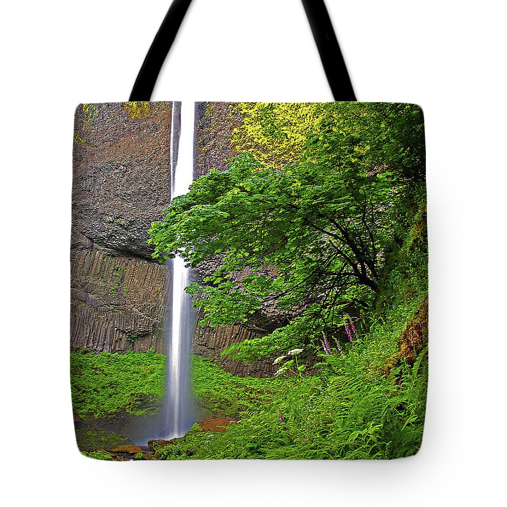 Oregon Tote Bag featuring the photograph Latourell Falls Oregon by Rich Walter