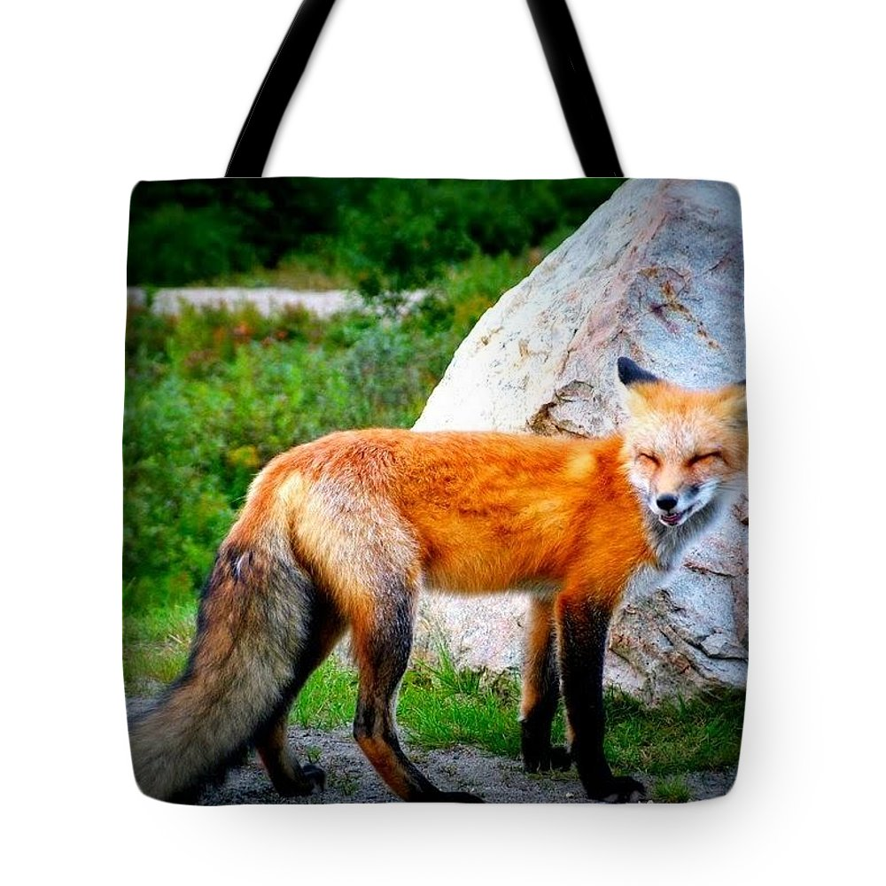 Nature Tote Bag featuring the photograph Laughing Fox by Thomas Comeau