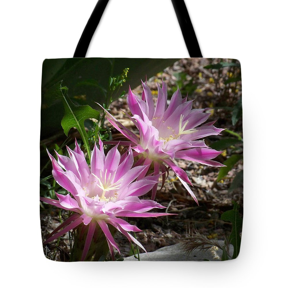 Cactus Tote Bag featuring the photograph Lavendar Cactus Flowers by Kathy McClure