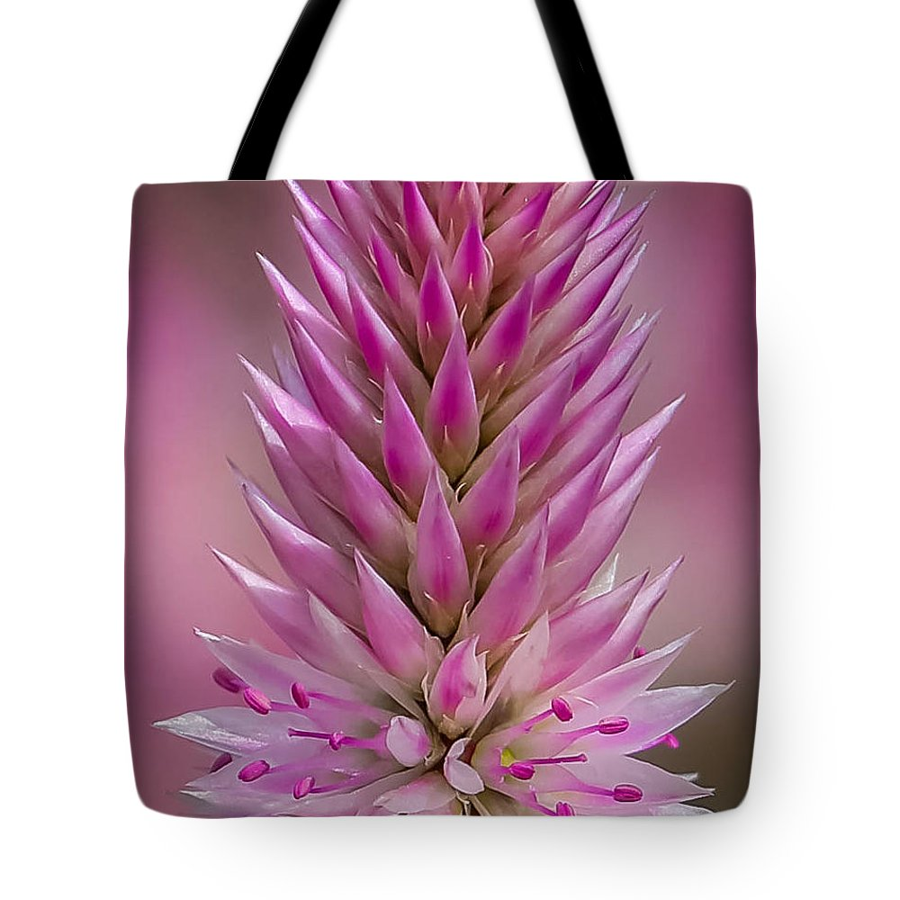 Macro Lavender Summer Spring Flowers Nature Outdoor Garden Tote Bag featuring the photograph Lavender Closeup by Cindy Smiley