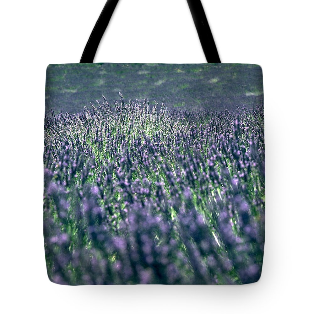 Lavender Tote Bag featuring the photograph Lavender by Flavia Westerwelle
