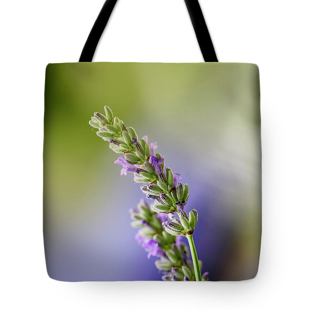 Lavender Tote Bag featuring the photograph Lavender by Nailia Schwarz