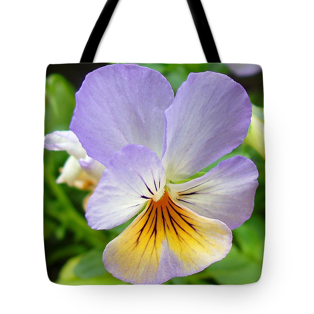 Pansy Tote Bag featuring the photograph Lavender Pansy by Nancy Mueller