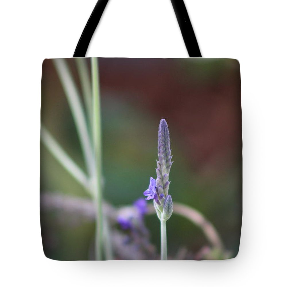 Lavender Tote Bag featuring the photograph Lavender Spike Against Barn Red by Colleen Cornelius