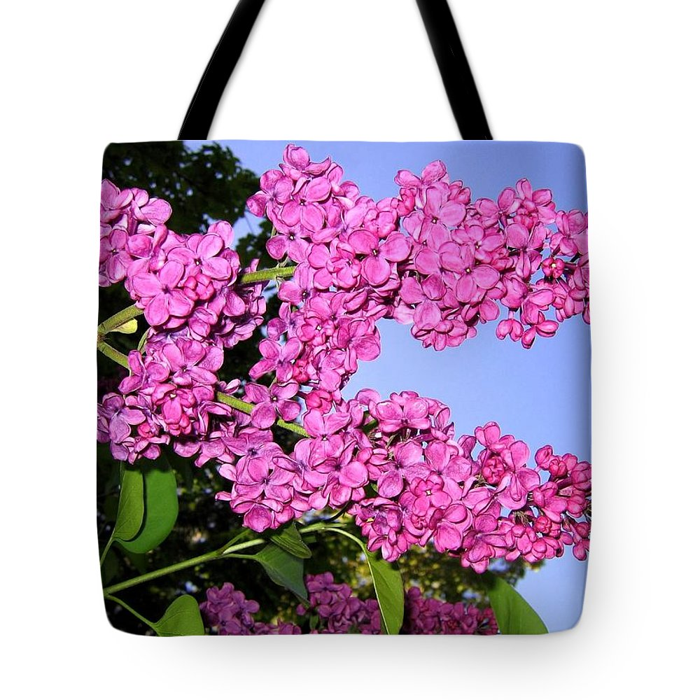 Lilacs Tote Bag featuring the photograph Lavish Lilacs by Will Borden