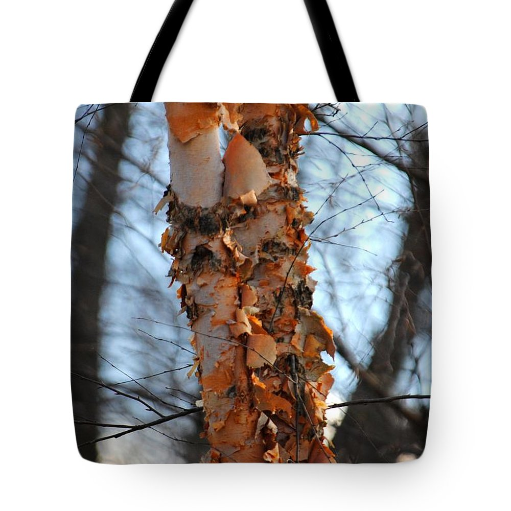 Layers Tote Bag featuring the photograph Layers by Jai Johnson