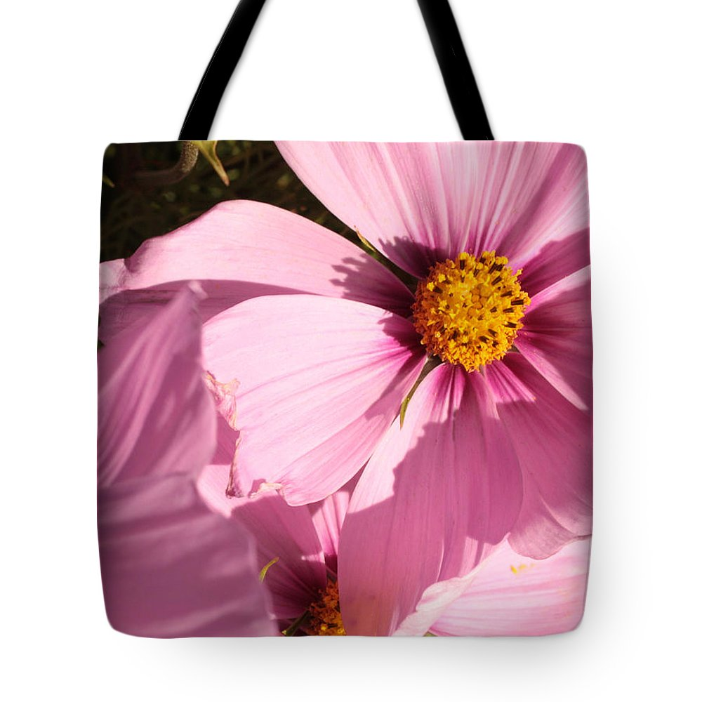 Pink Cosmos Tote Bag featuring the photograph Layers Of Pink Cosmos by Carol Groenen