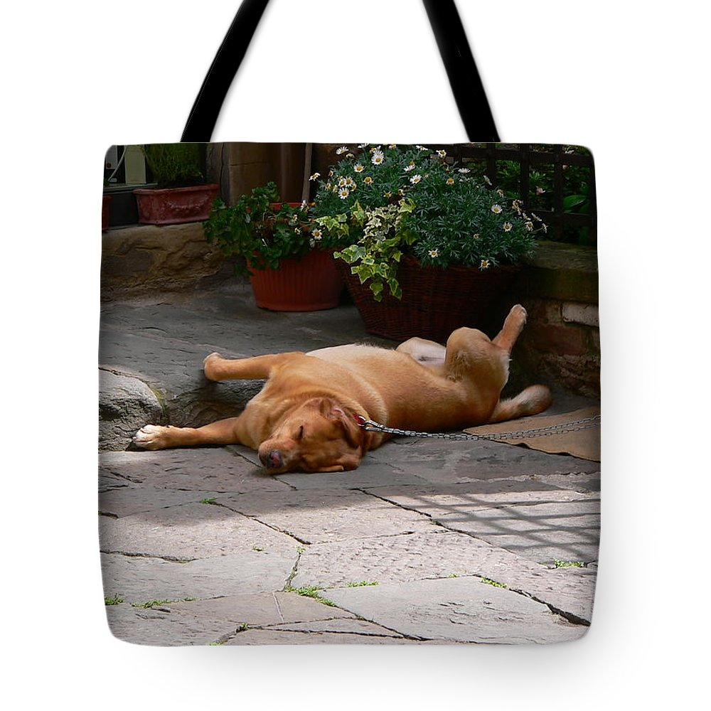 Dog Tote Bag featuring the photograph Lazy Day by Angela Wright