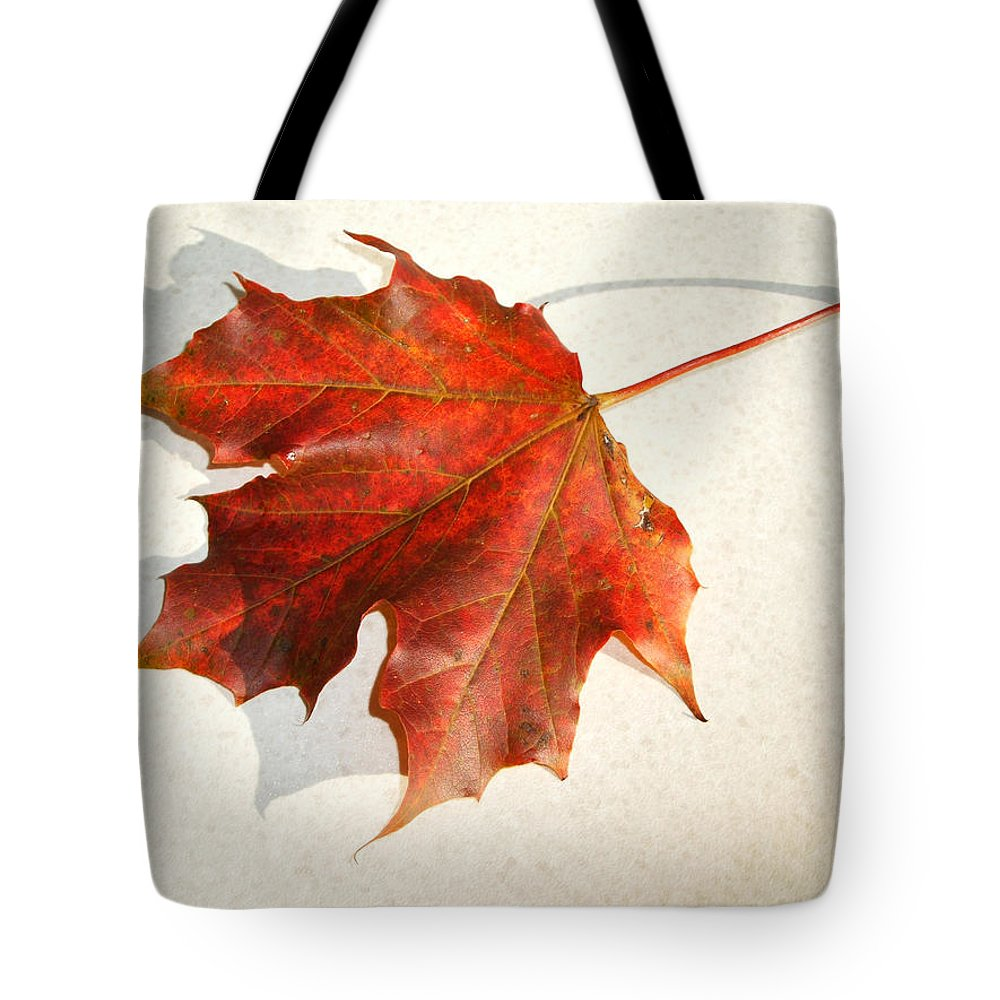 Leaf Tote Bag featuring the photograph Leaf by Cliff Norton