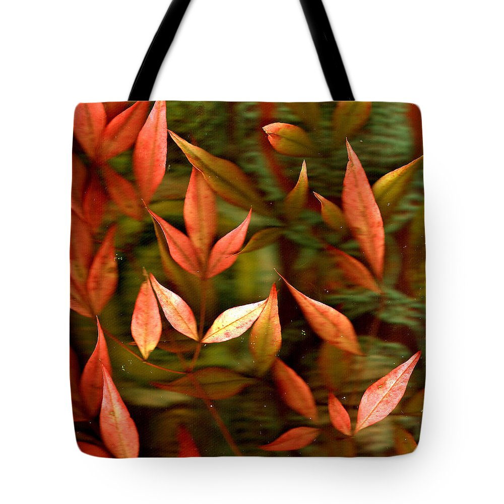 Leaves Tote Bag featuring the photograph Leaf Collage Photo by Wayne Potrafka