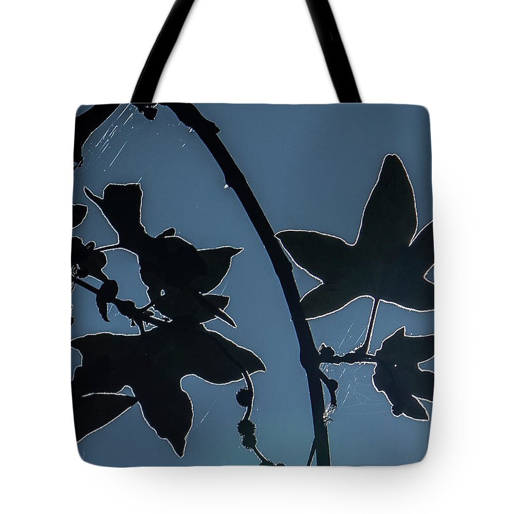 Leaves Tote Bag featuring the photograph Leafs Backlit by Carol Hakobian