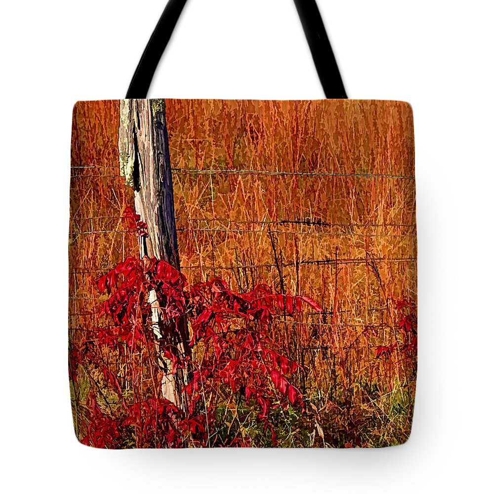 Hh Photography Of Florida Tote Bag featuring the photograph Lean On Me by HH Photography of Florida