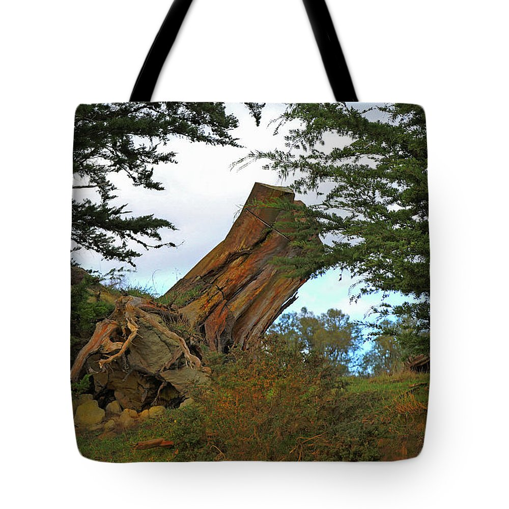 Treetrunk Tote Bag featuring the photograph Leaning Trunk by Nareeta Martin