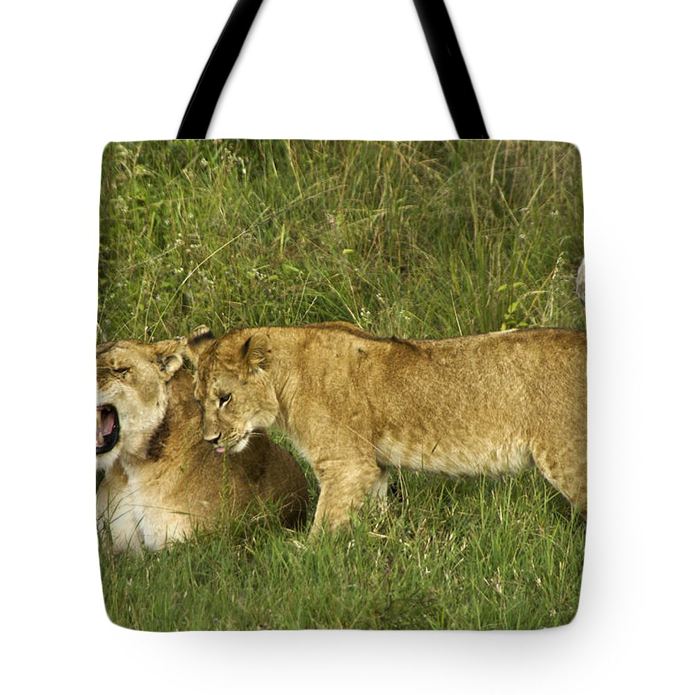 Africa Tote Bag featuring the photograph Leave Me Alone by Michele Burgess