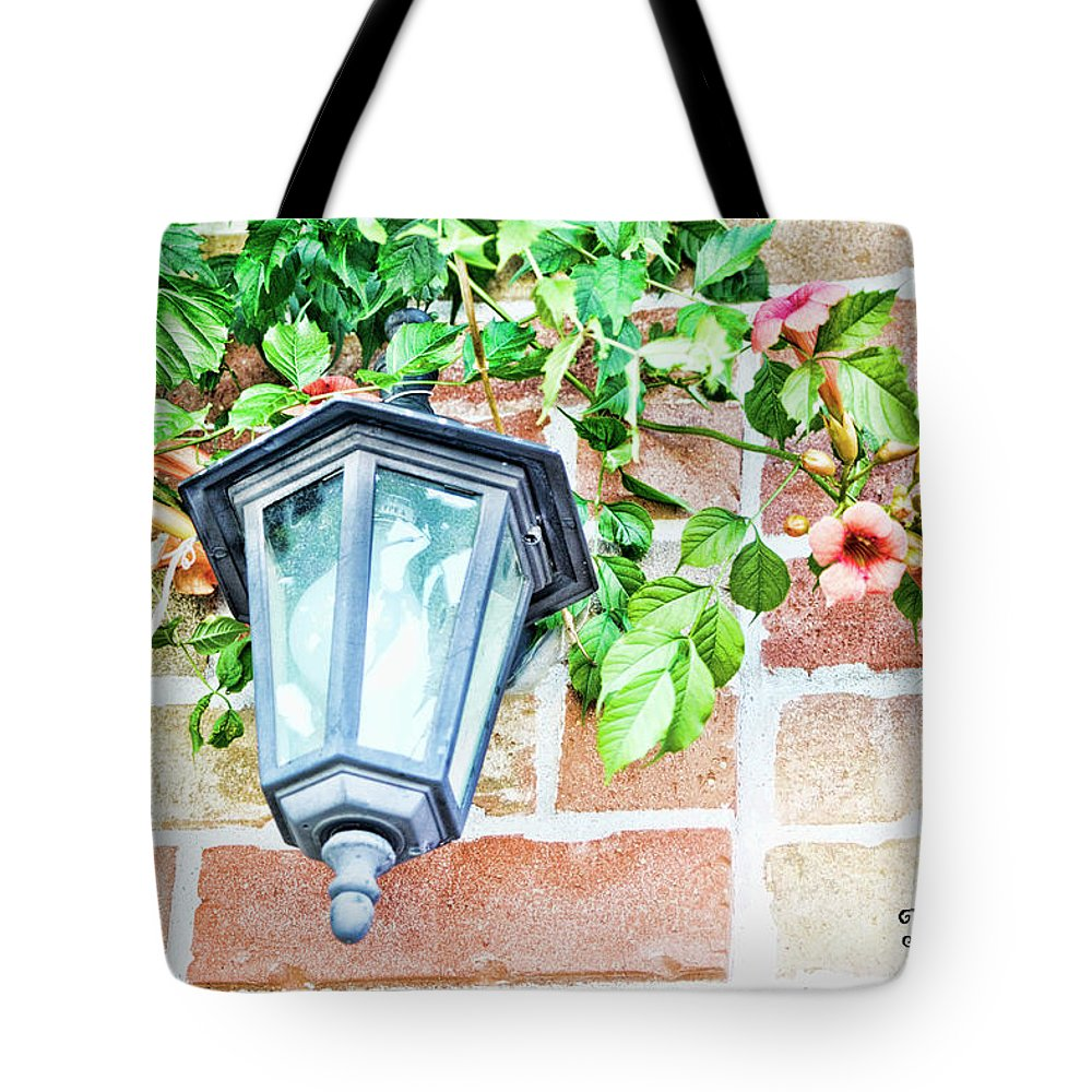 Light Tote Bag featuring the photograph Leave The Porch Light On by Traci Cottingham