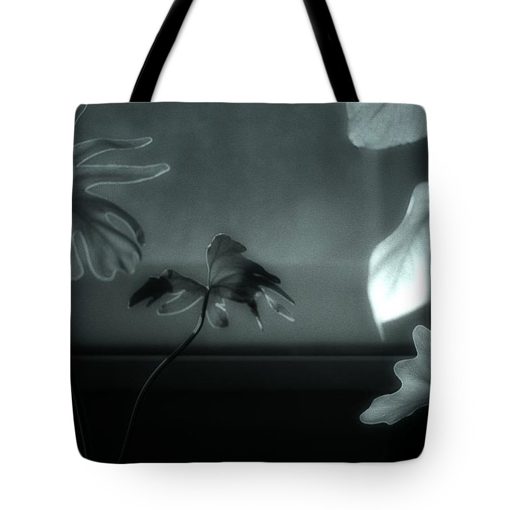 Black And White Tote Bag featuring the photograph Leaves By Moonlight by Jeff Breiman