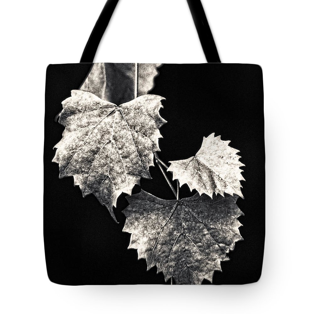 B&w Tote Bag featuring the photograph Leaves by Christopher Holmes