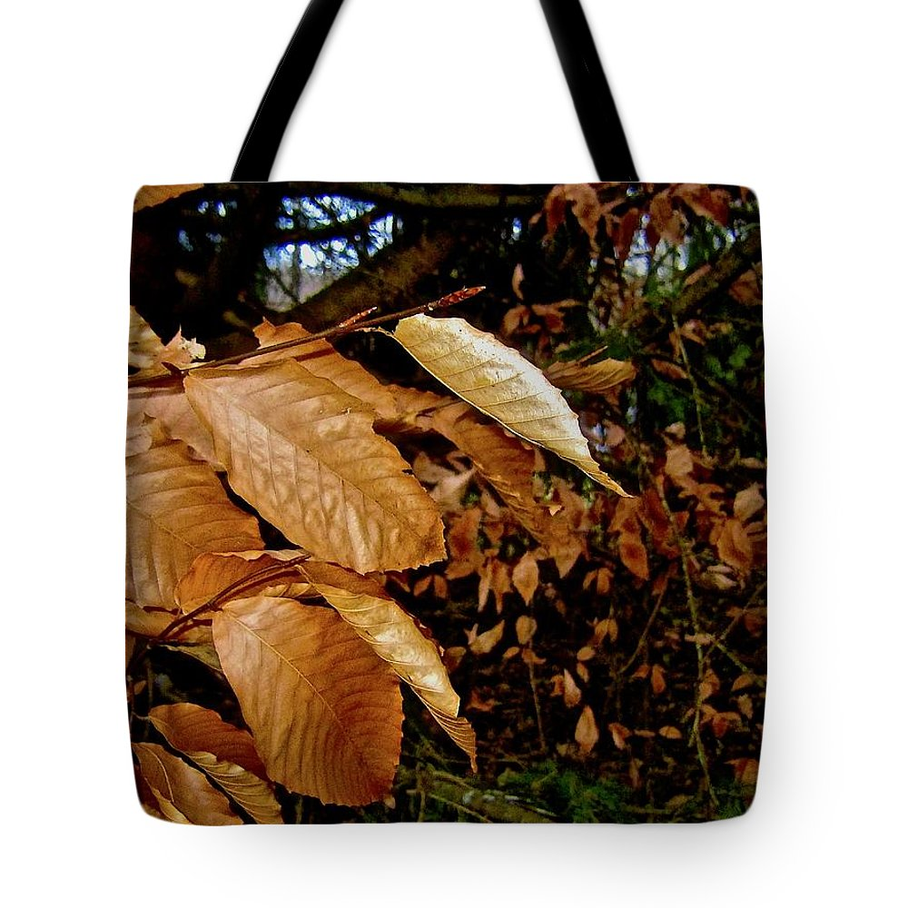 Leaves Tote Bag featuring the photograph Leaves In Late Autumn by Elizabeth Tillar