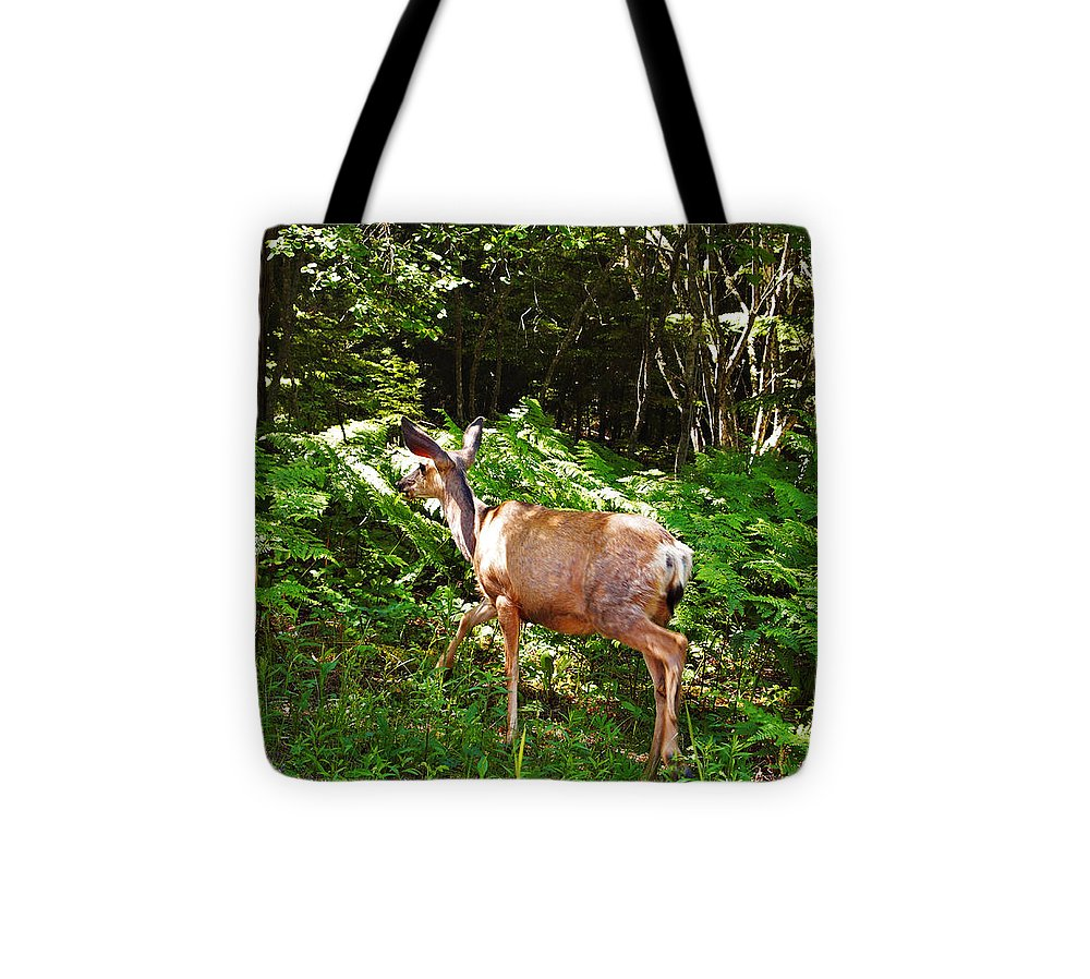 Deer Tote Bag featuring the photograph Leaving The Road by Jo-Anne Gazo-McKim