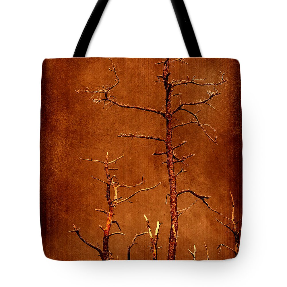 Dipasquale Tote Bag featuring the photograph Left Bare And Broken by Dana DiPasquale