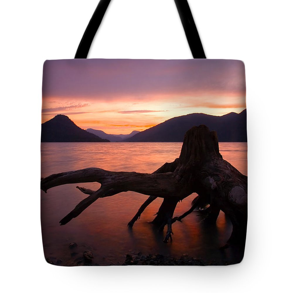 Stump Tote Bag featuring the photograph Left Behind by Mike Dawson