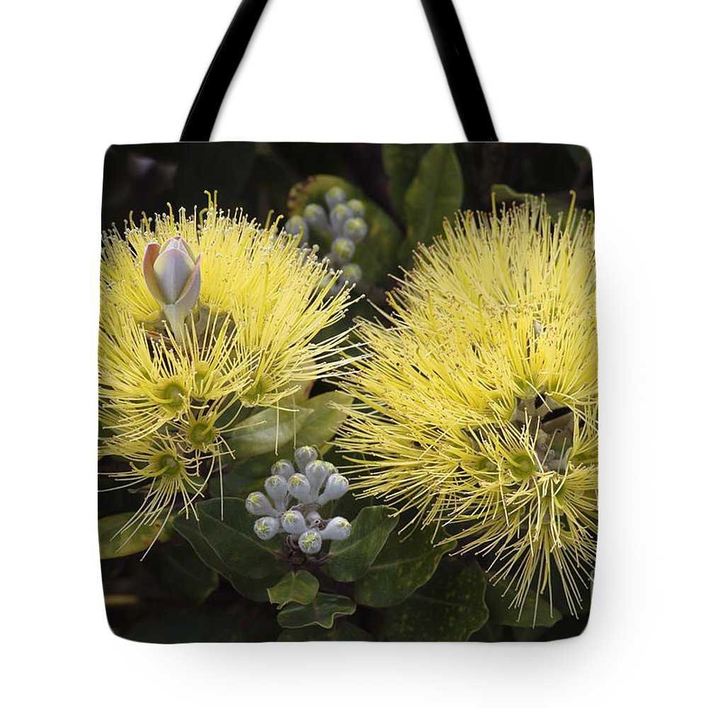 Bloom Tote Bag featuring the photograph Lehua Mamo Blossom by Greg Vaughn - Printscapes