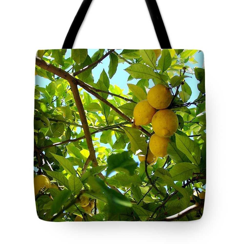 Lemons Tote Bag featuring the photograph Lemon Tree by Christopher Rowlands