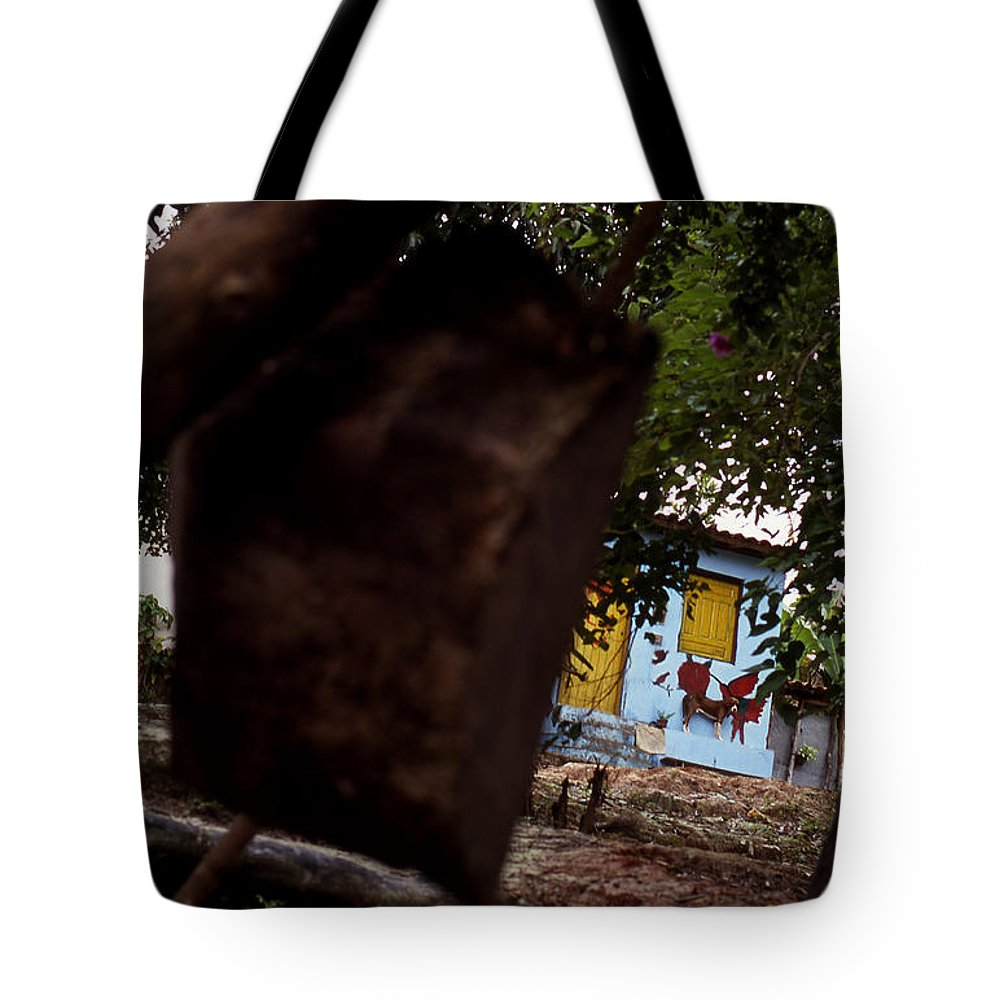 Dog Tote Bag featuring the photograph Lencois - Dog by Patrick Klauss
